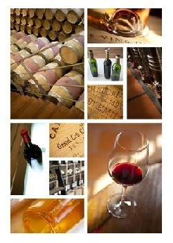 Sommelier: Courses, Tastings and Events - by Maitre y Sommelier